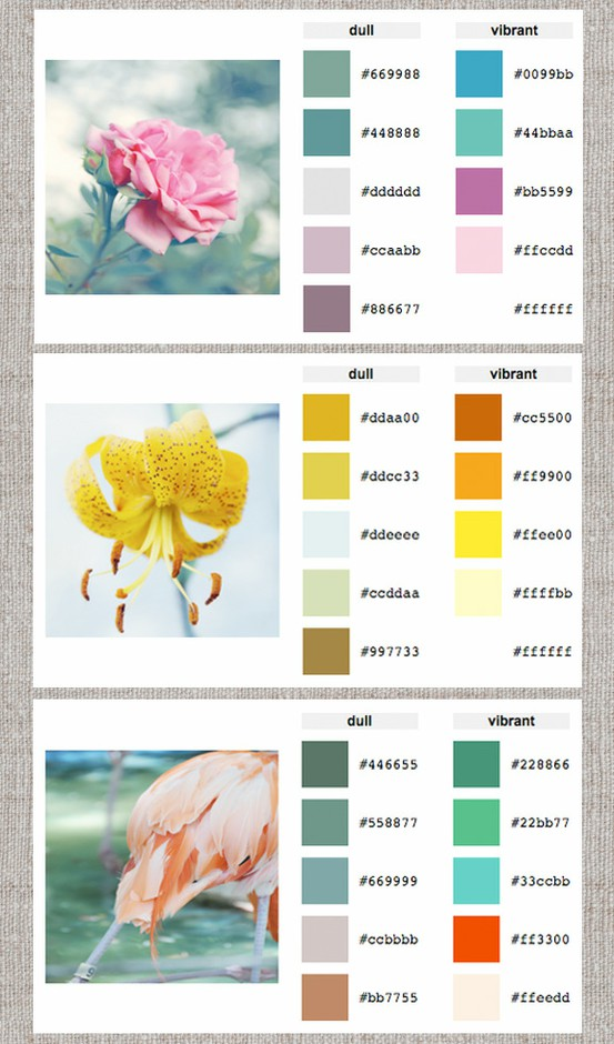 bedroom color palette generator large and beautiful photos photo to select bedroom color