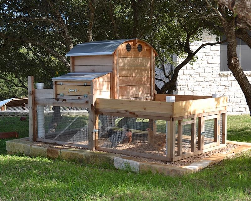 best backyard chicken coop photo - 2