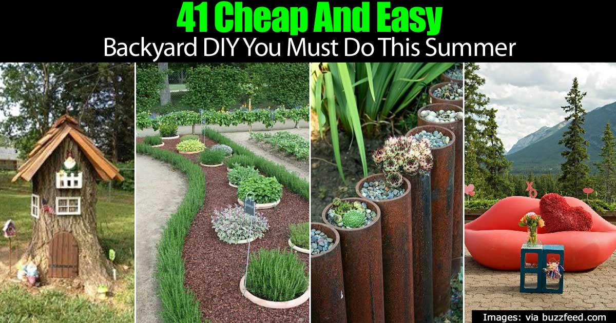 cheap backyard projects photo - 2
