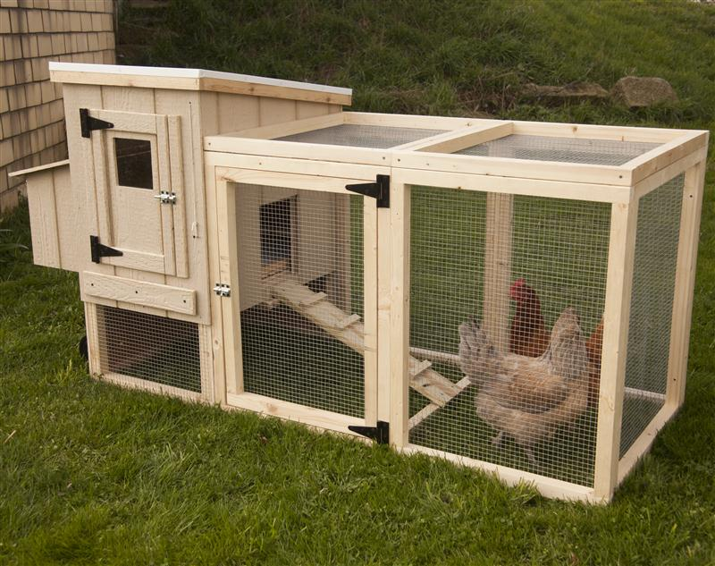 Merveilleux Chicken Coop Backyard