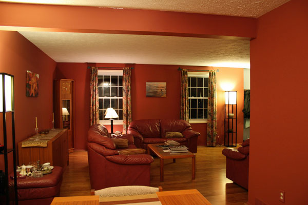 color for dining room photo - 2