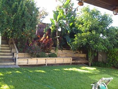 fix my backyard photo - 2