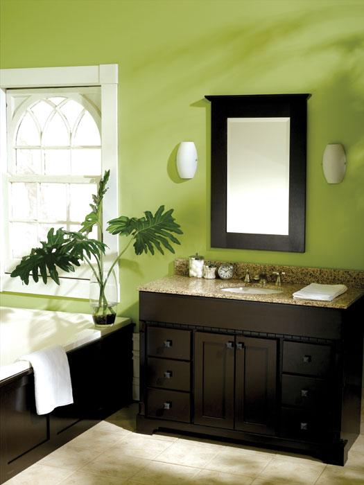 green bathroom photo - 1