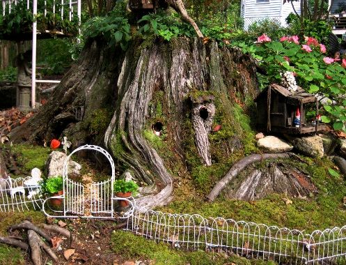 How do i make a fairy garden large and beautiful photos Photo