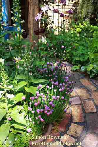how to create an herb garden photo - 2