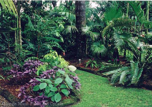 how to design a garden photo - 2