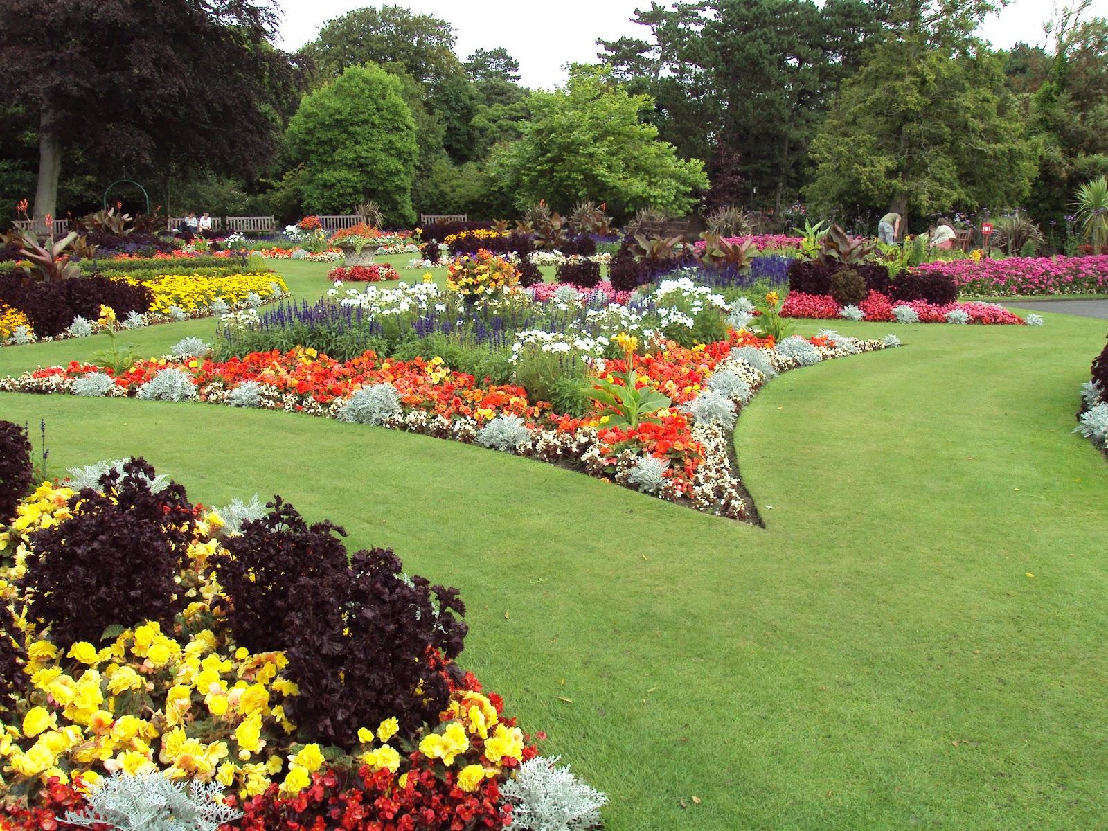 how to do a garden photo - 2