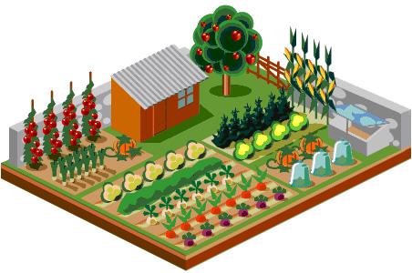 how to garden vegetables photo - 2