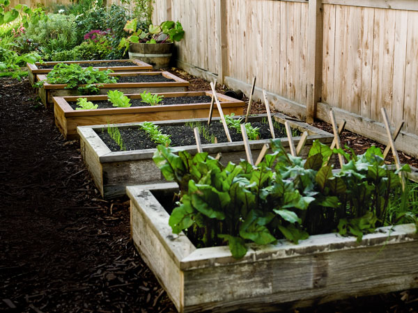 how to install a raised garden bed photo - 2