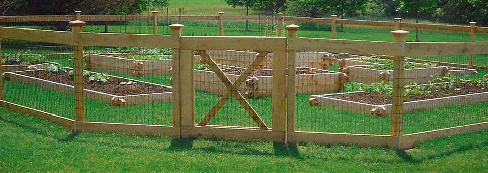 Keep Deer Out Of Garden Connellyoncommercecom