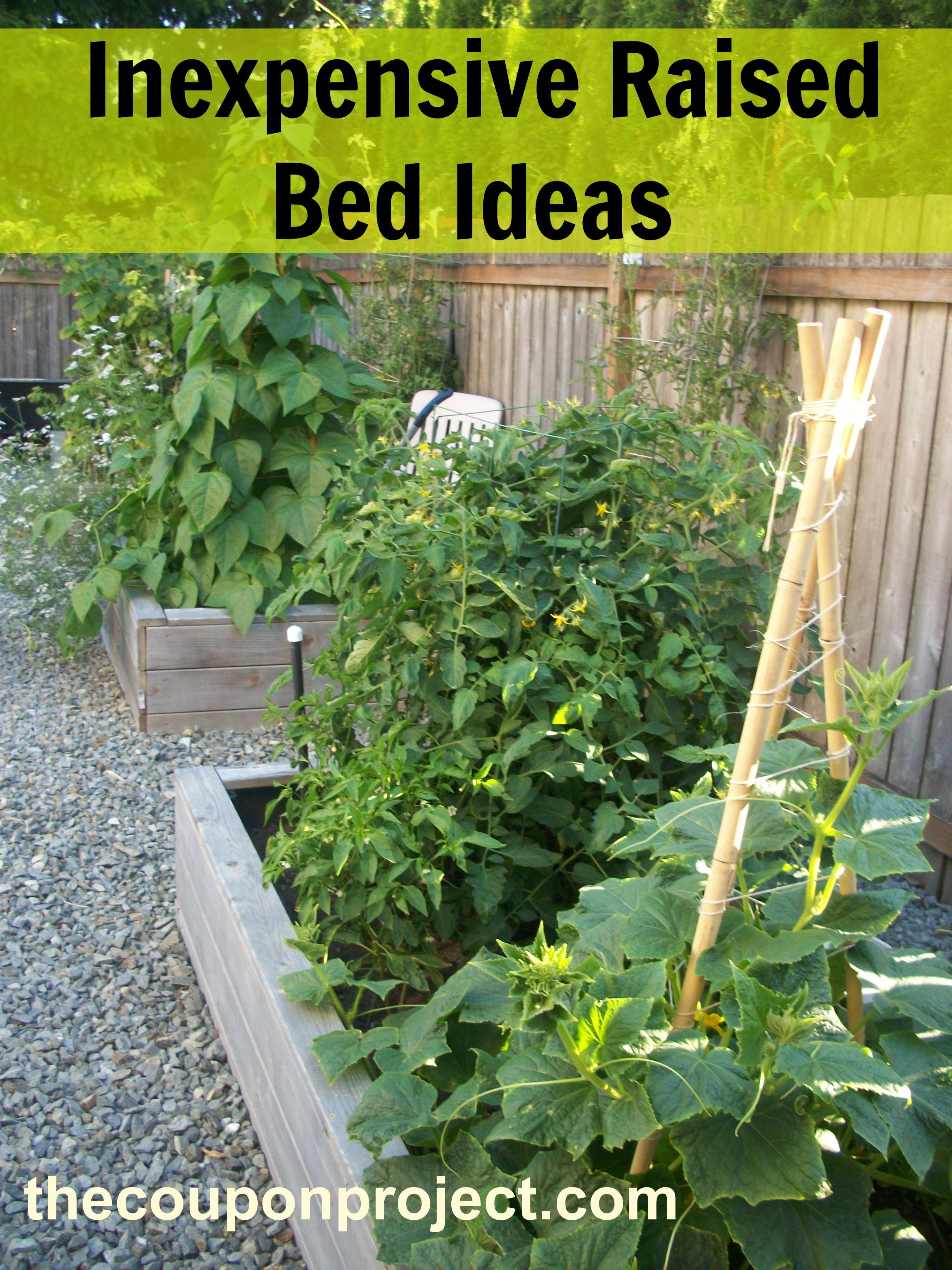 how to make a garden bed photo - 2