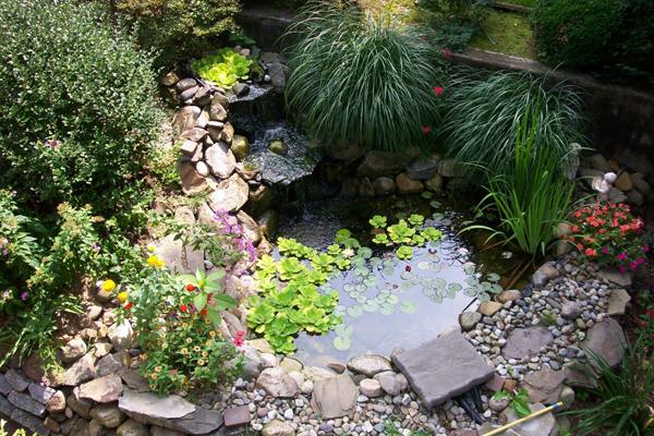 how to make a garden pond photo - 2
