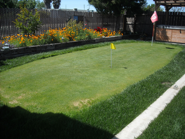 how to make a golf green in your backyard photo - 1