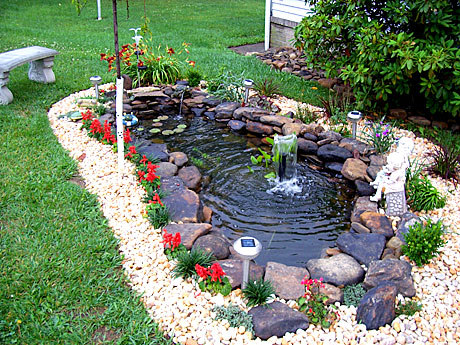 How to make a pond in your backyard large and beautiful for Making a garden pond