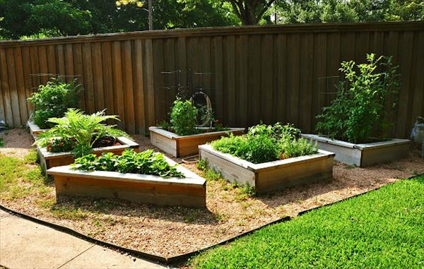 how to make a raised vegetable garden bed photo - 1