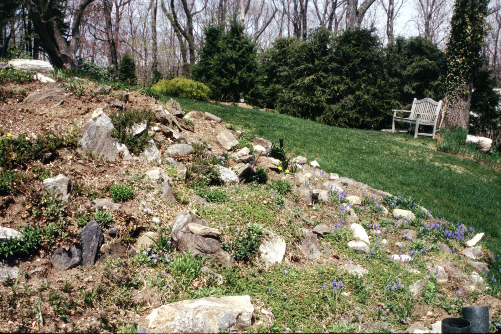 How To Make A Rock Garden Large And Beautiful Photos