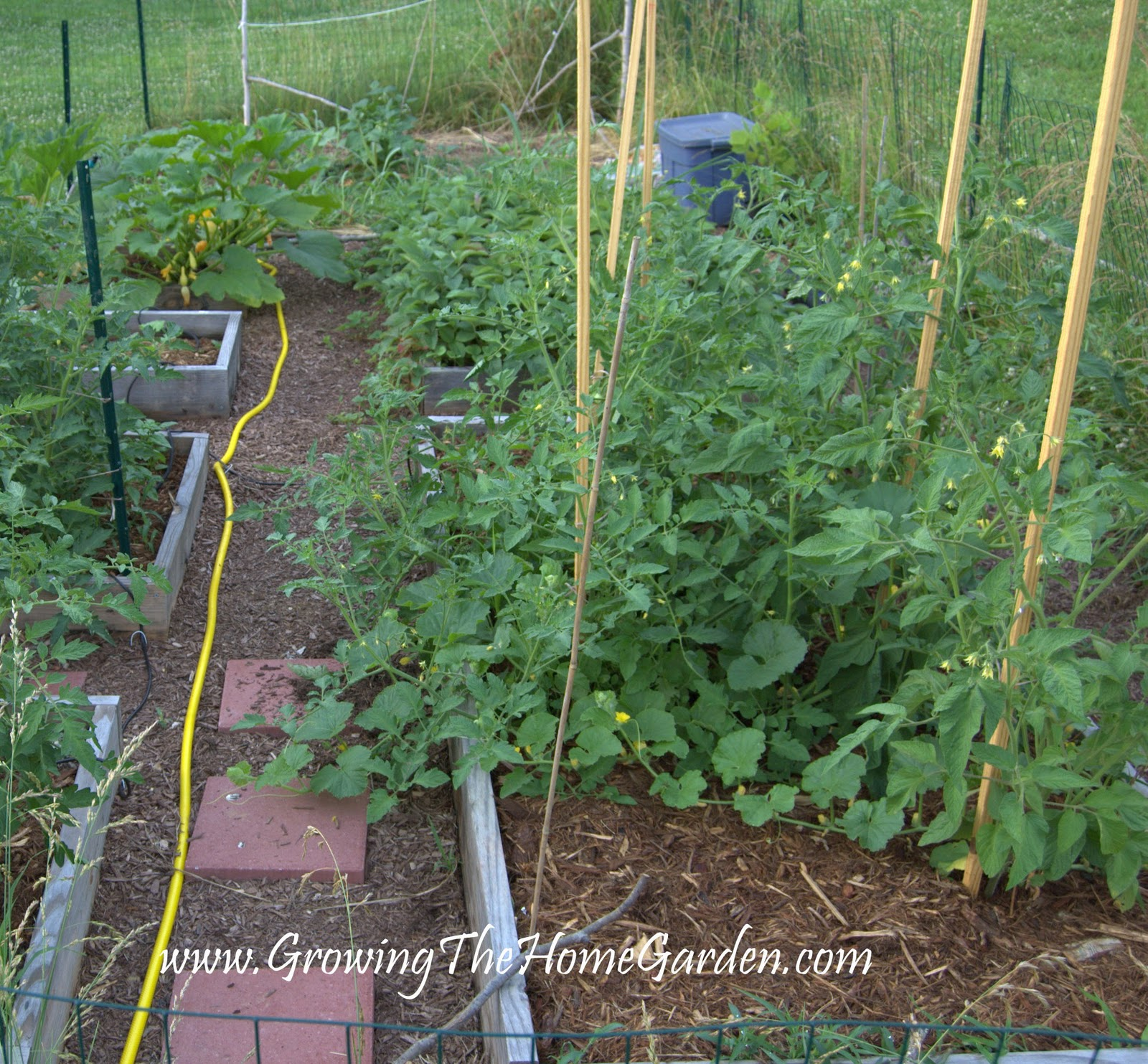 How to make a vegetable garden bed large and beautiful for Creating a vegetable garden