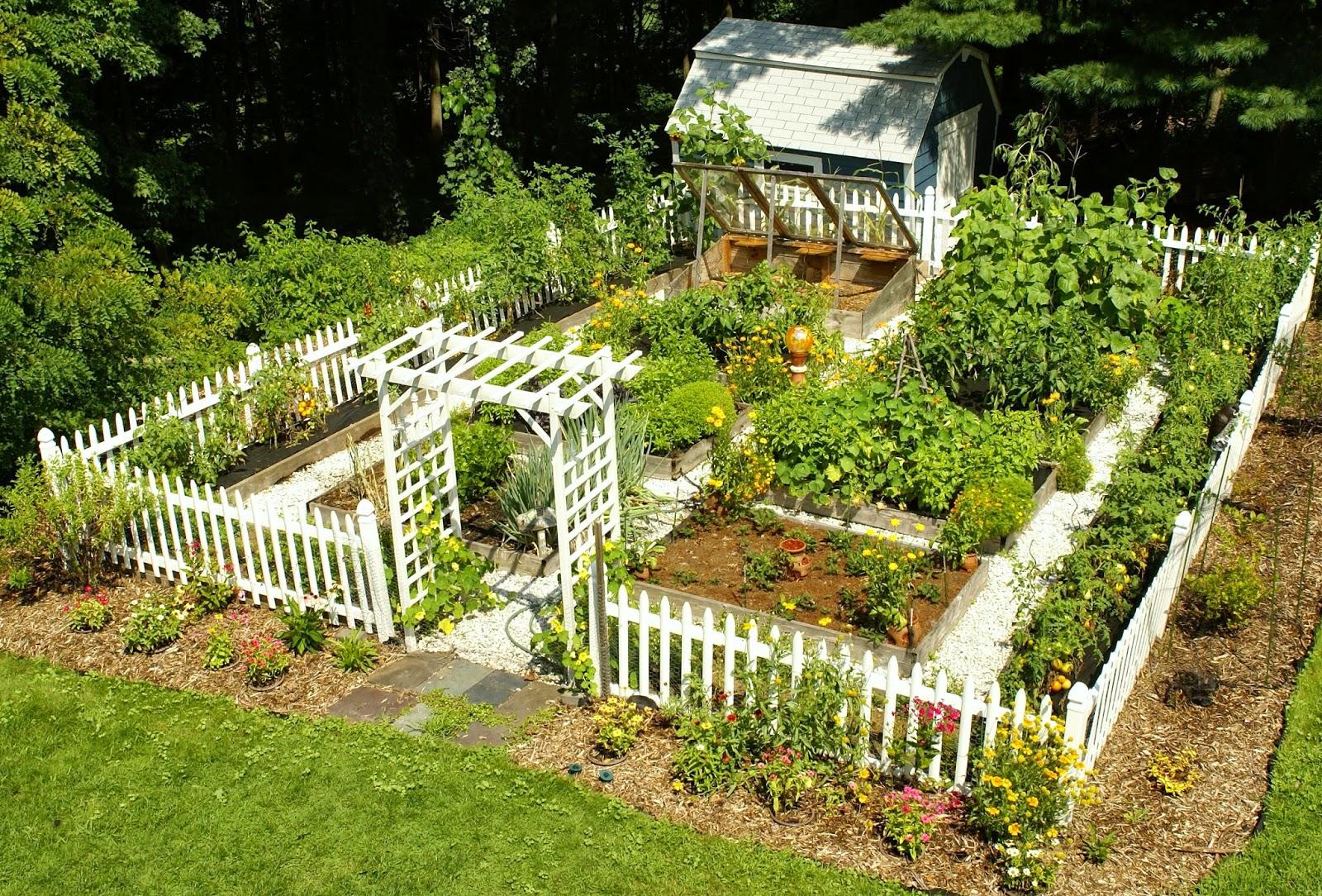 how to make a vegetable garden box photo - 2