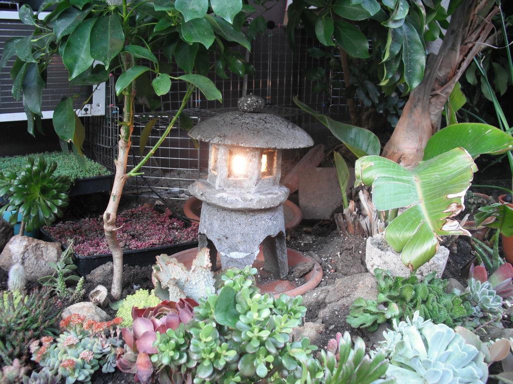 how to make japanese garden photo - 2