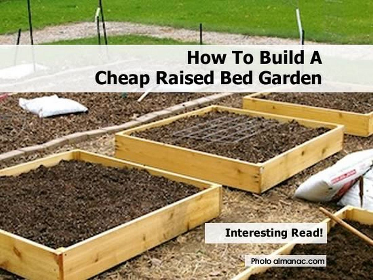 how to make raised garden bed photo - 1