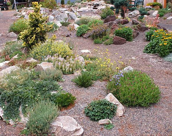 How To Make Rock Garden Photo   1