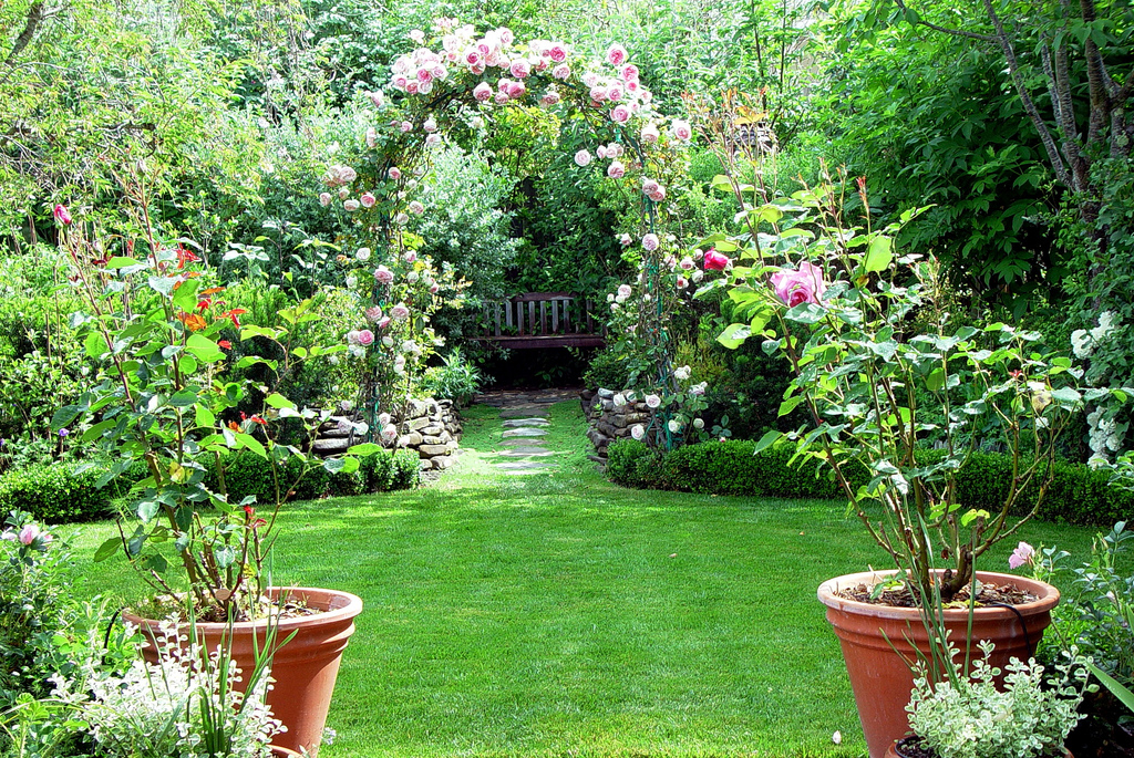how to make your backyard beautiful large and beautiful