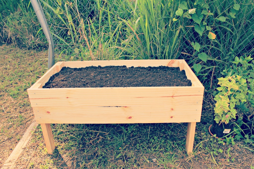 How to make your own raised garden bed large and for Best raised bed garden designs