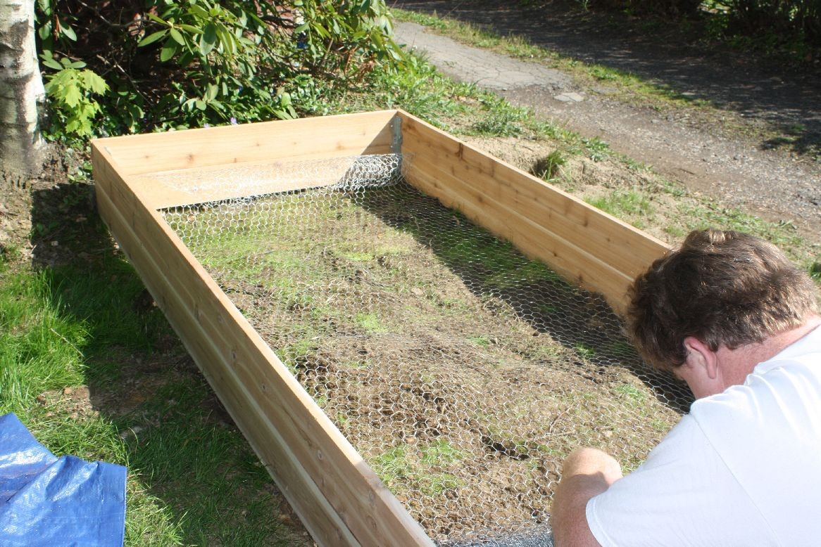 how to plant a raised garden photo - 1