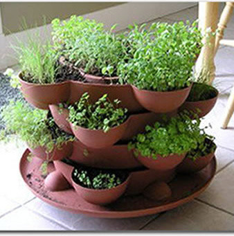 how to plant an herb garden in pots photo - 2