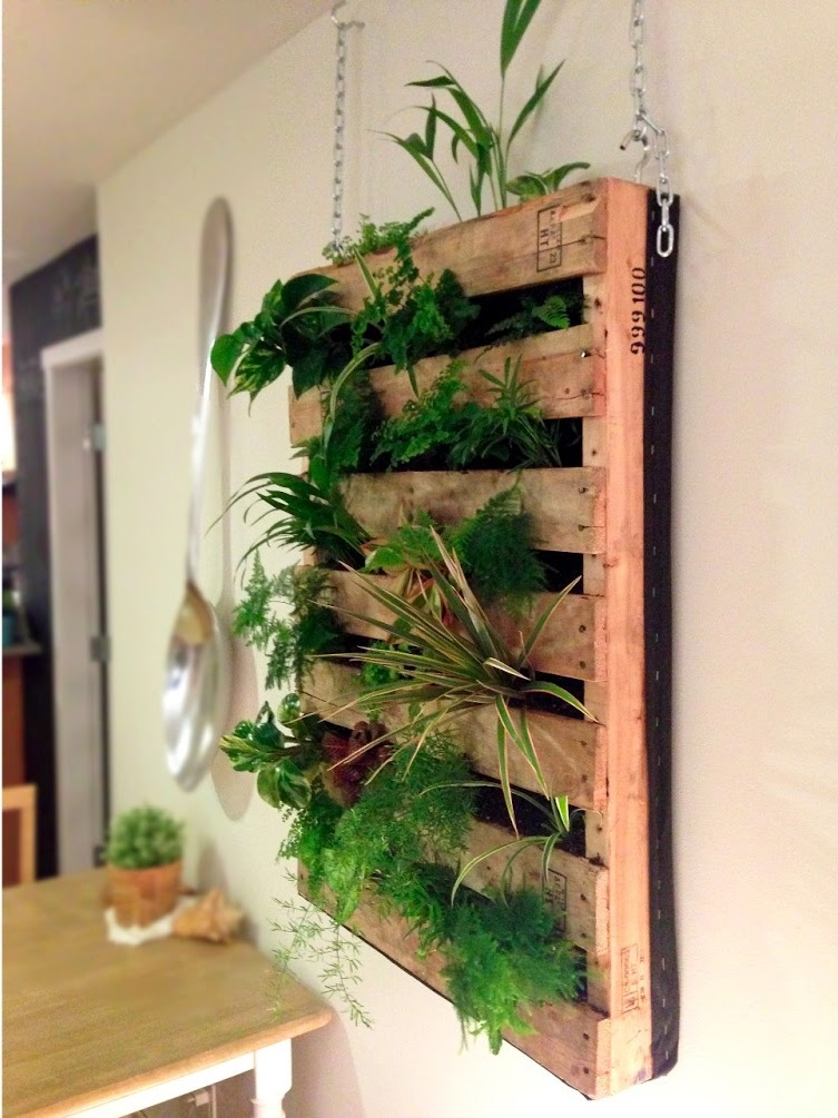 how to plant an indoor herb garden photo - 1