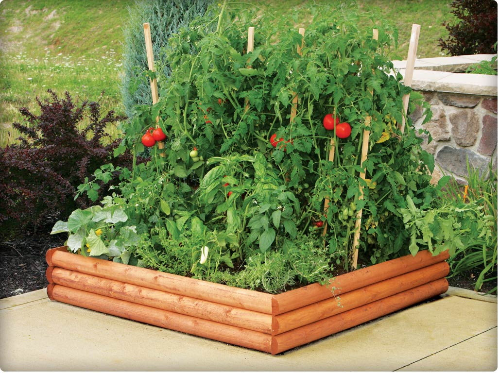 how to prepare a raised garden bed photo - 2