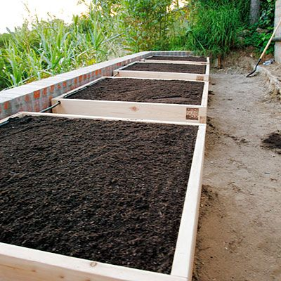 how to start a raised vegetable garden photo - 2