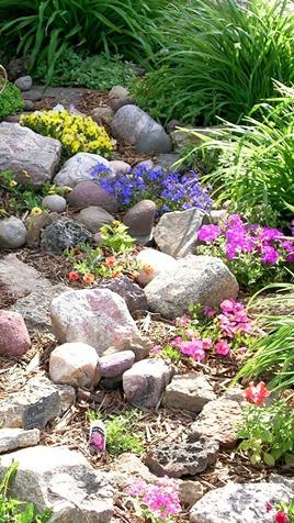 how to start a rock garden photo - 2