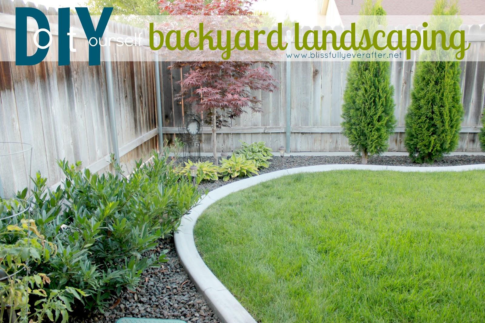 inexpensive backyard landscaping photo - 2