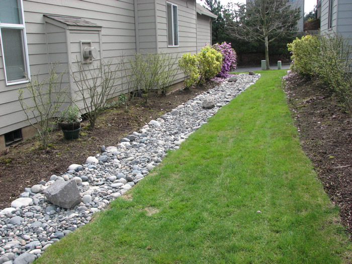 Installing A French Drain In Backyard