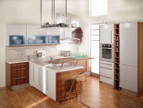kitchen design for small kitchen photo - 1