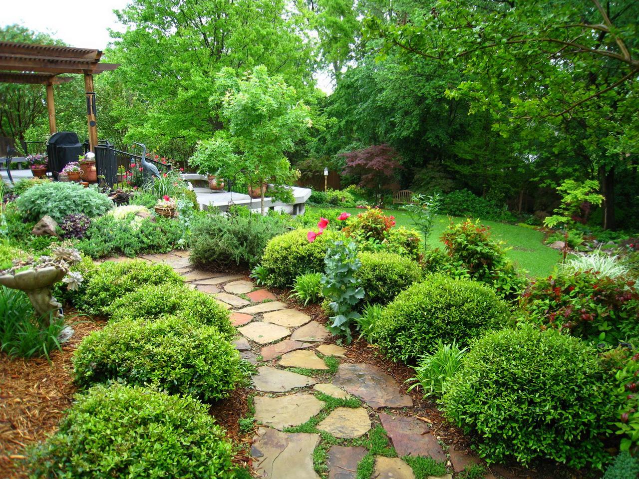 landscaping backyards photo - 2