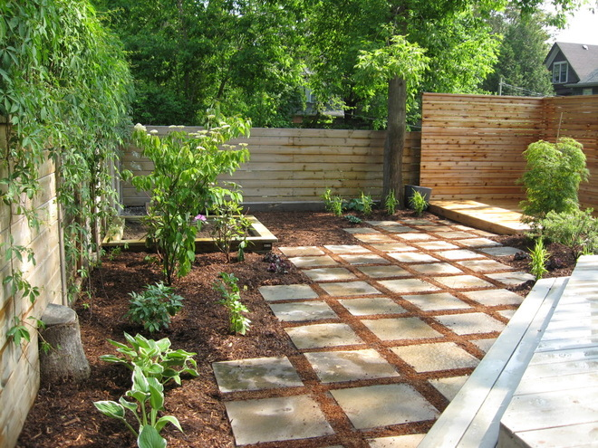 landscaping ideas for backyard with dogs photo - 2