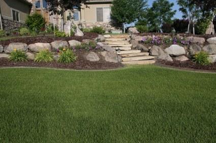 landscaping ideas for sloped backyard photo - 2