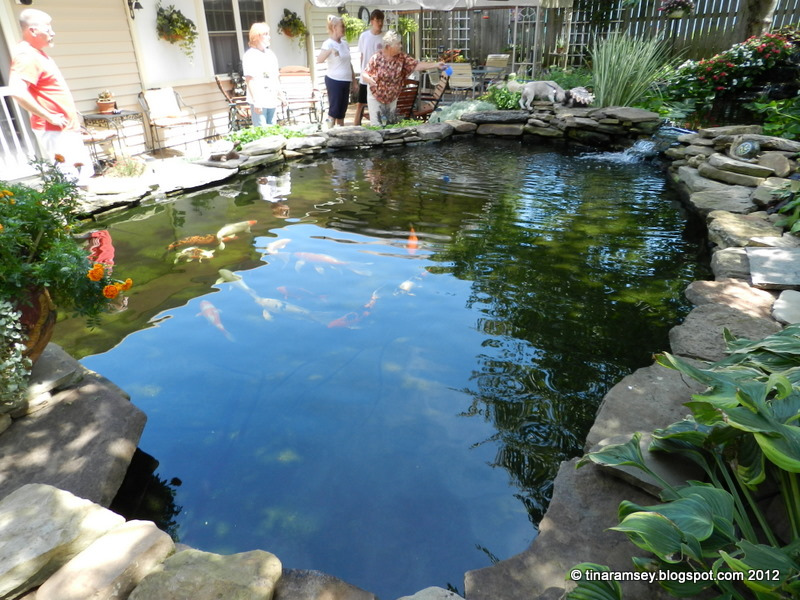 large backyard ponds photo - 1