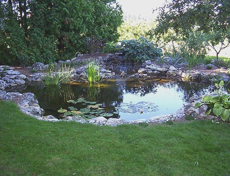 large backyard ponds photo - 2