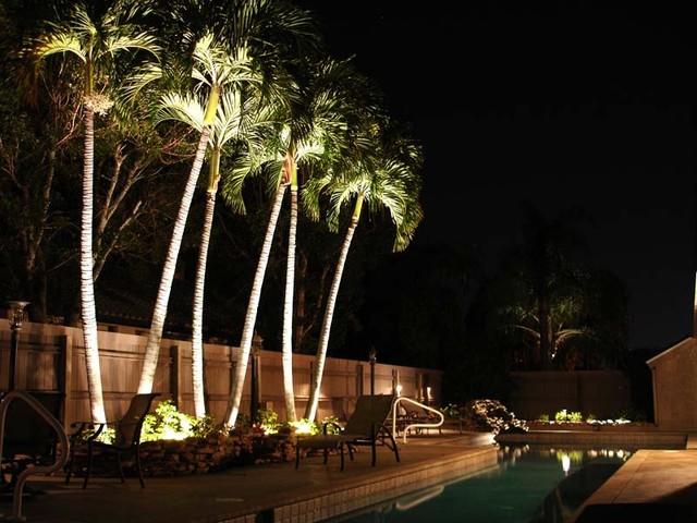 lights in backyard photo - 2