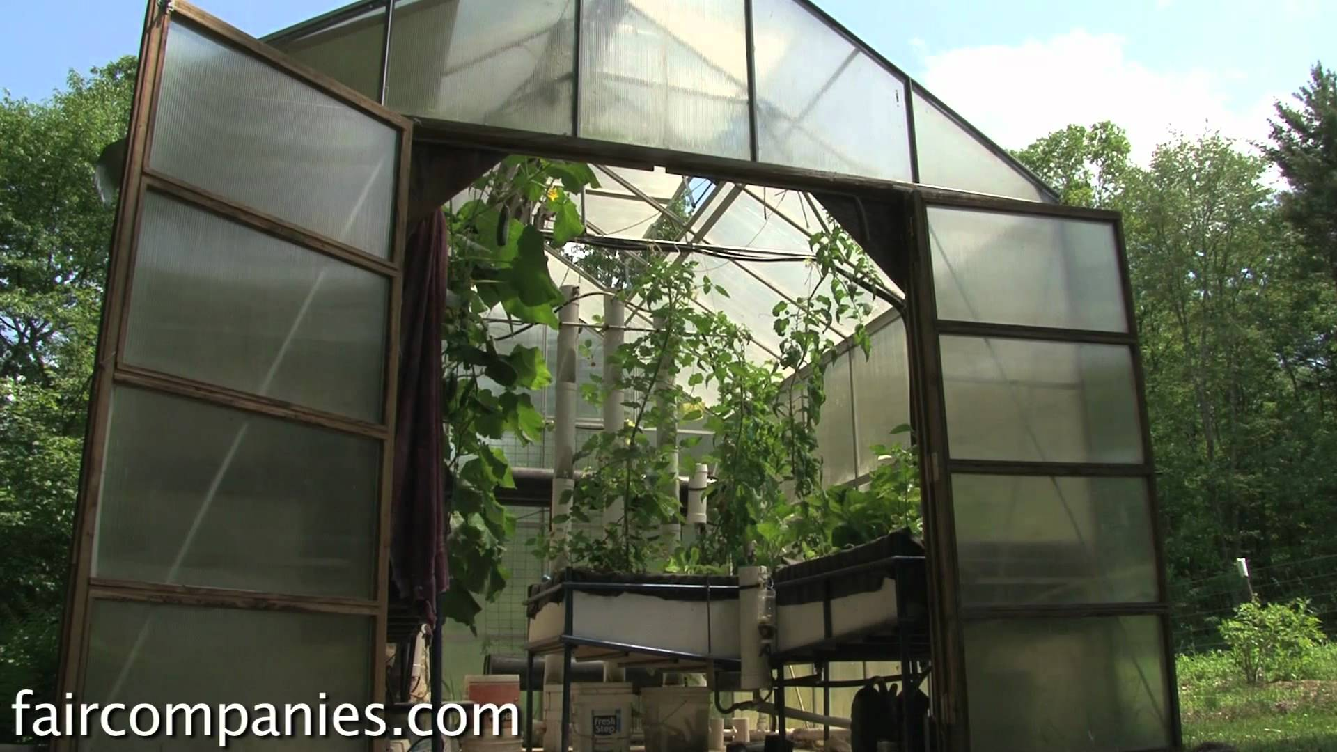 mosquito problem in backyard large and beautiful photos photo