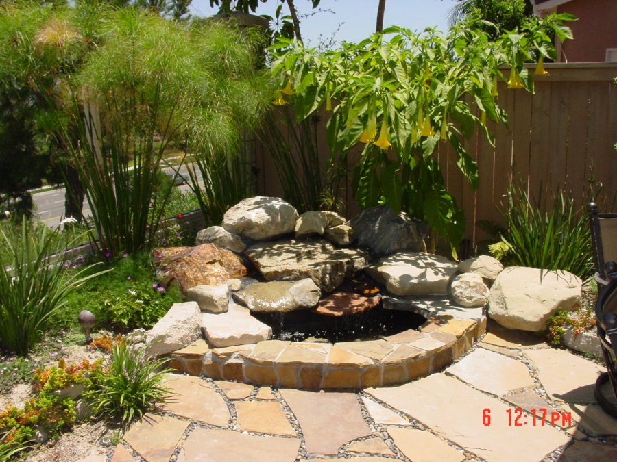 pictures of backyards photo - 2
