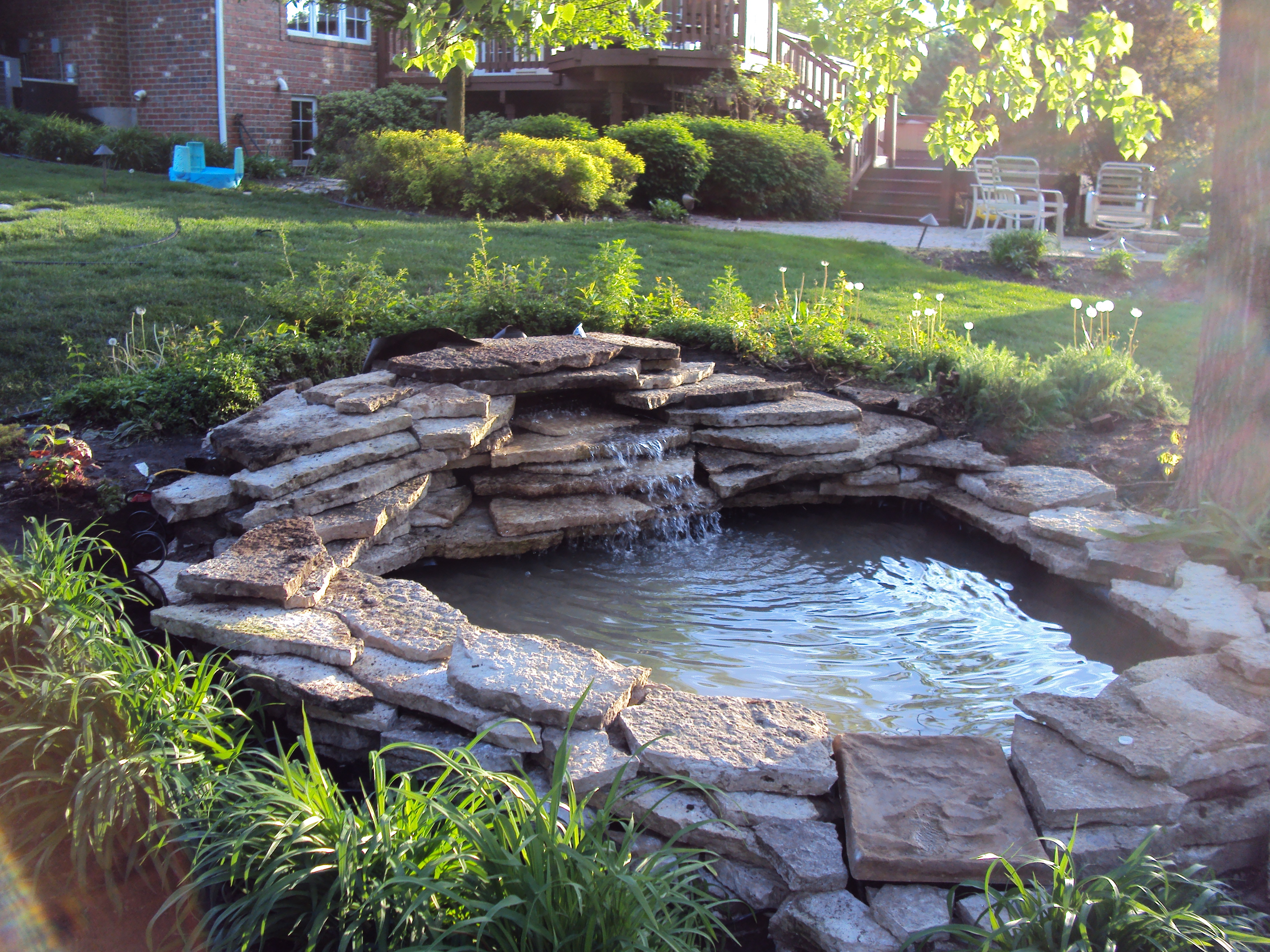 pond backyard photo - 1