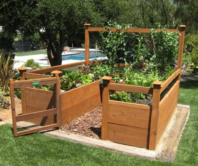 raised bed garden how to photo - 1