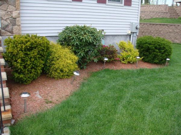 simple backyard landscapes photo - 2