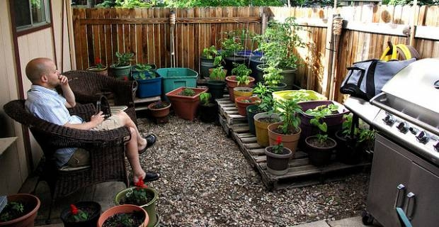 garden design ideas budget small garden ideas on a budget small backyard - Backyard Design Ideas On A Budget