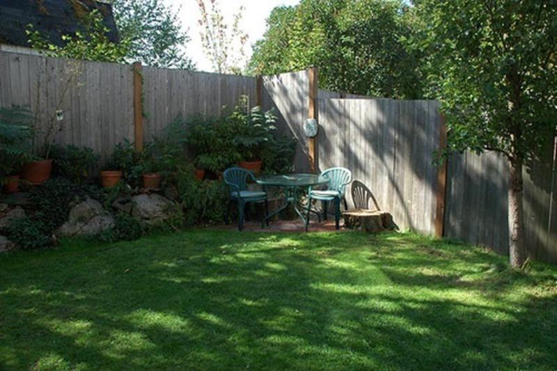 small backyard landscape photo - 2