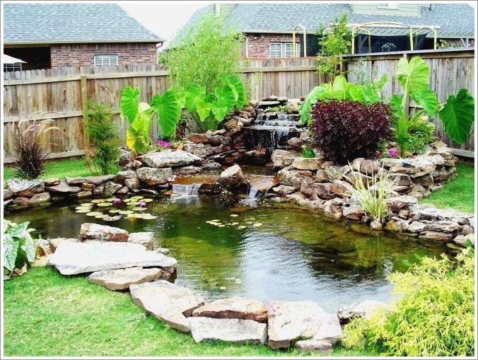 small backyard pond photo - 1